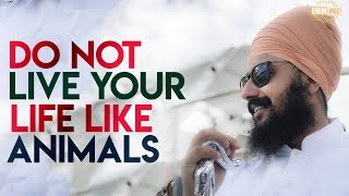 Do not LIVE your LIFE like ANIMALS