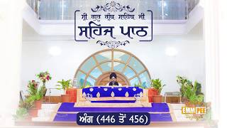 Angg  446 to 456 - Sehaj Pathh Shri Guru Granth Sahib | Bhai Ranjit Singh Dhadrianwale