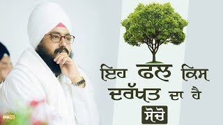 Which tree this fruit is from? | Bhai Ranjit Singh Dhadrianwale
