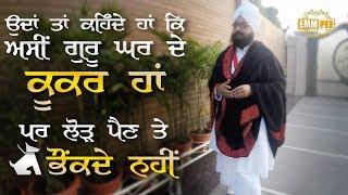 Aasi Guru Ghar De Kukar a | Dhadrian Wale