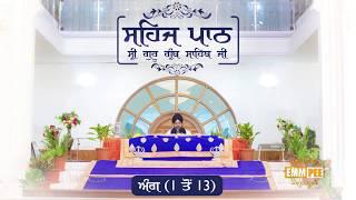 Sehaj Pathh Shri Guru Granth Sahib Angg 1 - 13 | Bhai Ranjit Singh Dhadrianwale