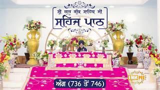 Angg  736 to 746 - Sehaj Pathh Shri Guru Granth Sahib Punjabi | Dhadrian Wale