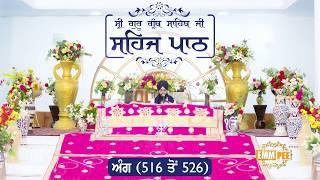 Angg  516 to 526 - Sehaj Pathh Shri Guru Granth Sahib | Bhai Ranjit Singh Dhadrianwale