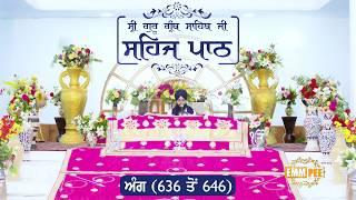 Angg  636 to 646 - Sehaj Pathh Shri Guru Granth Sahib | DhadrianWale